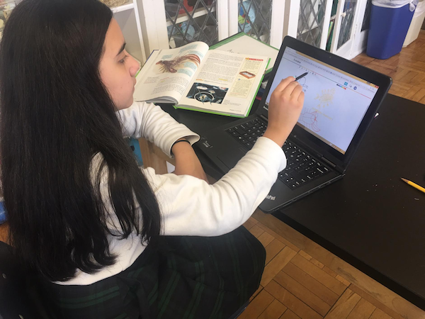 Science class is using goformative.com to give students instant feedback and suggestions in realtime.